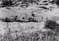 Gado na Fazenda Cabeça de Boi em Soledade (PB)