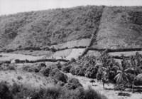 Pequenas propriedades agrícolas do brejo do Vale de Mimoso em Arcoverde (PE)