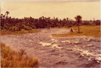 Rio Formoso : Parque Nacional das Emas : Mineiros, GO