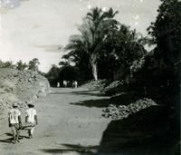 Trizidela : Grajaú, MA