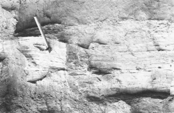 Barranco de argila em Assis Brasil (AC) - jan. 1953