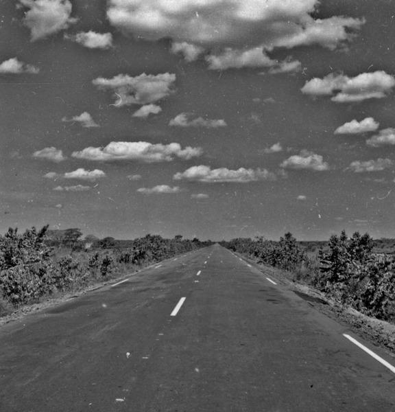 Trecho da BR - 319 Manaus-Porto Velho nos campos terciari em Humaitá a 78Km ao norte da Balsa do Madeira(AM) - s.d.