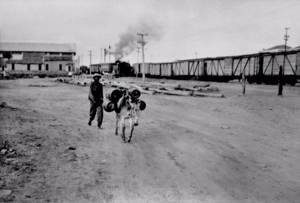 Burro carregando água em Juazeiro (BA) - 1957