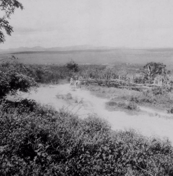 Povoado Cruz na cidade de São Gonçalo dos Campos (BA) - fev. 1962
