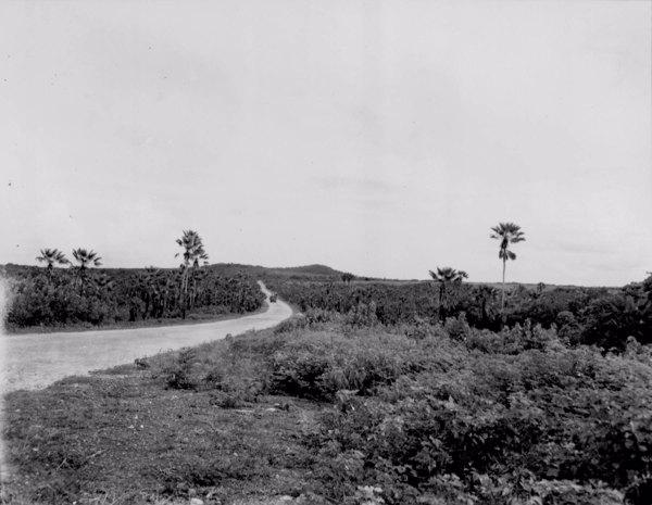 Rodovia que liga Pacajus a Fortaleza (CE) - maio. 1952