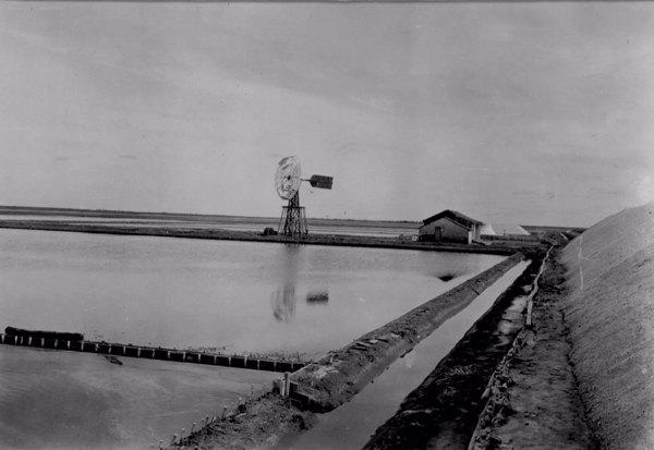 Catavento nas salinas do Rio Aracati em Aracati (CE) - maio. 1952