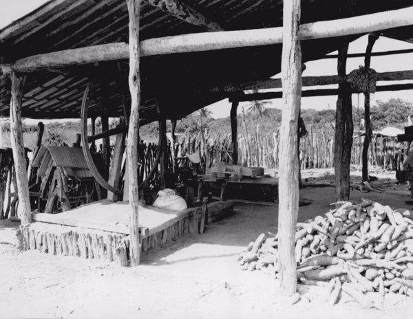 Casa de farinha em Fortim (CE) - jun. 1952