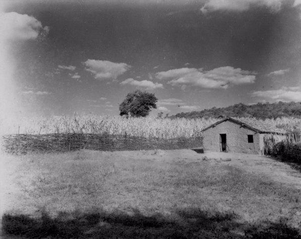 Depósito de milho queimado em Canindezinho distrito de Lavras da Mangabeira (CE) - jun. 1952