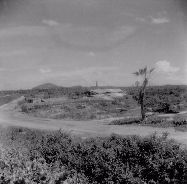 Fazenda de gado em Palhano (CE) - maio. 1962