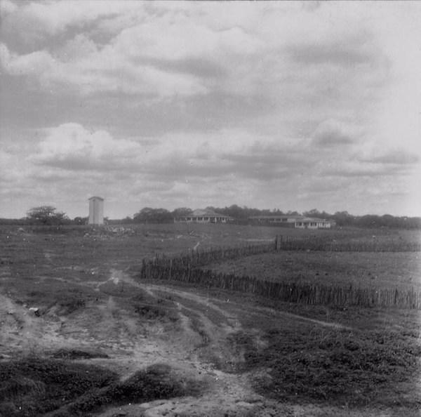 Fazenda de gado em Beberibe (CE) - maio . 196