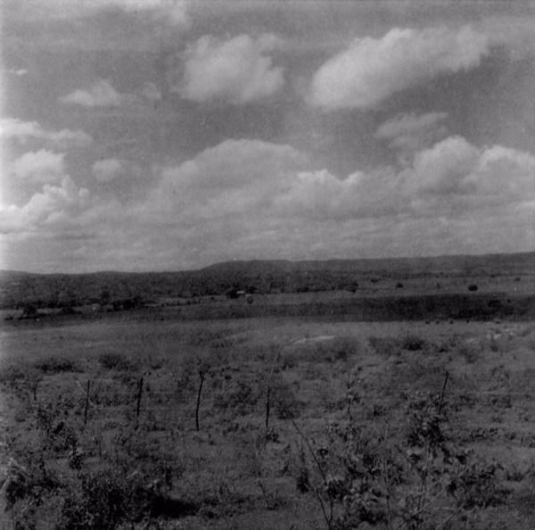 Agricultura no baixio do Riacho Xique - Xique : Município de Potengi - 1960