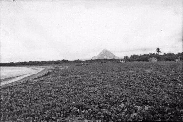 Aspecto do litoral em Piúma. Ao fundo a cadeia e o monte Aga. Note-se casas de pescadores junto a praia, cobertas de palmeiras. (ES) - 1958