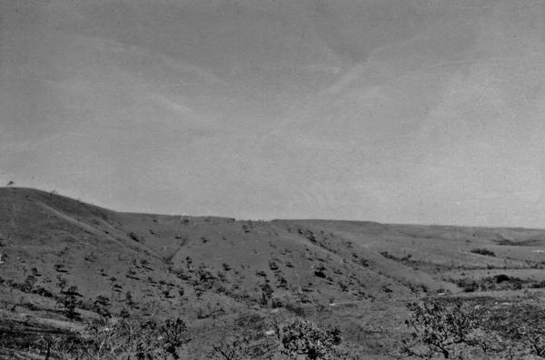 Campos limpos nas encostas perto de Planaltina : Goiás (GO) - 1954
