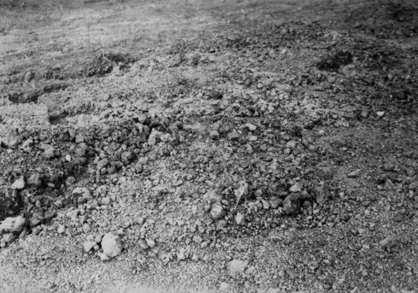 Lateritos perto da BR-14 : Anápolis (GO) - 1957