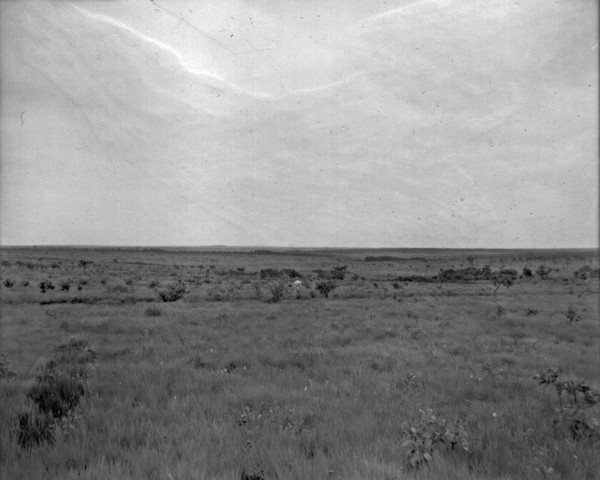 Campo limpo entre Rio Verde e Jataí (GO) - 1953
