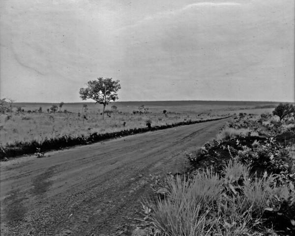 Campo limpo entre Rio Verde e Jataí, vendo-se a estrada (GO) - 1953