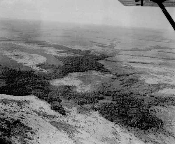 Vista aérea parcial perto de Carolina (MA) - 1953
