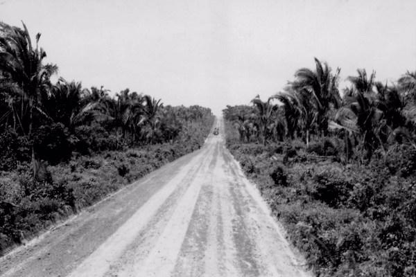 Estrada a 8 km. de Caxias (MA) - 1957