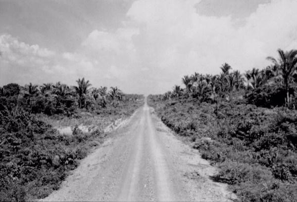 Estrada Codó - São Luís (MA) - 1957