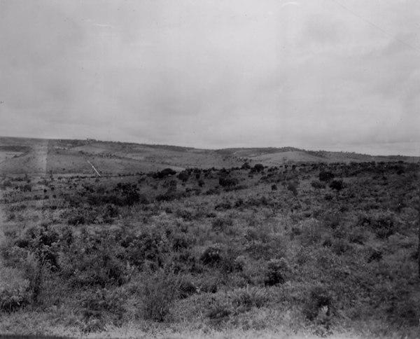 Relevo em Campos Altos (MG) - fev. 1952