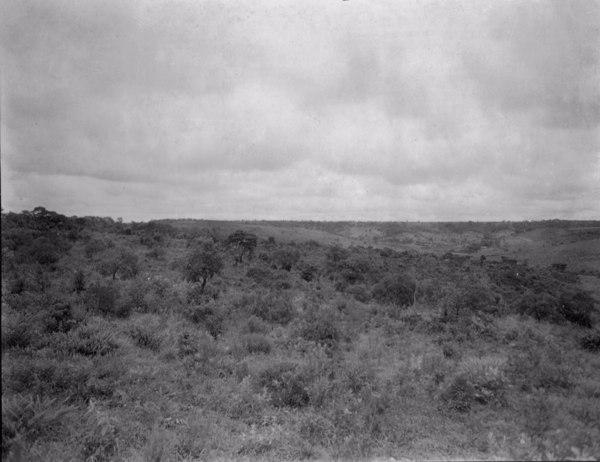 Relevo e vegetação na cidade de Rio Paranaíba (MG) - fev. 1952