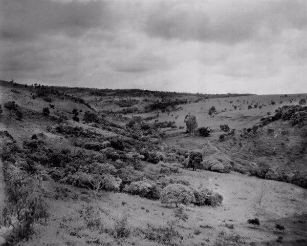 Fazenda na cidade de Rio Paranaíba (MG) - fev. 1952