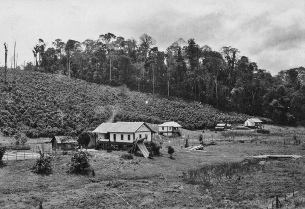 Vale do Rio Doce : Município de Governador Valadares - déc. 50