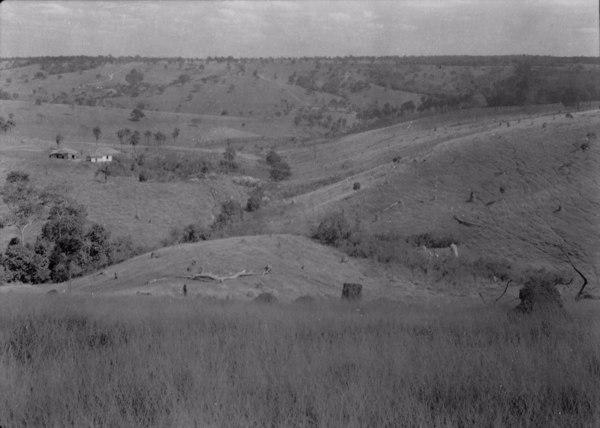 Paisagem agrícola na cidade de Matutina (MG) - 1954