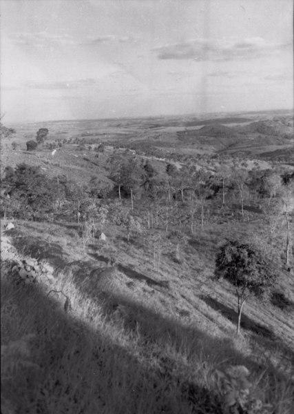 Vegetação na cidade de São Gotardo (MG) - 1954