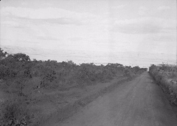 Estrada em Piumhi (MG) - 1954