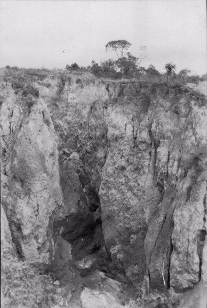 Voçoroca em Nepomuceno (MG) - 1958