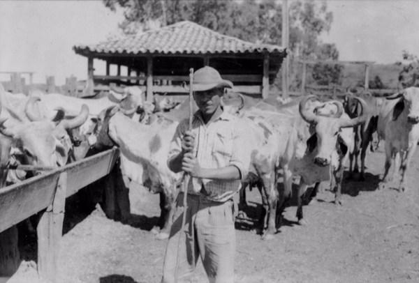 Vaqueiro da fazenda Saco dos Cochos (MG) - 1958