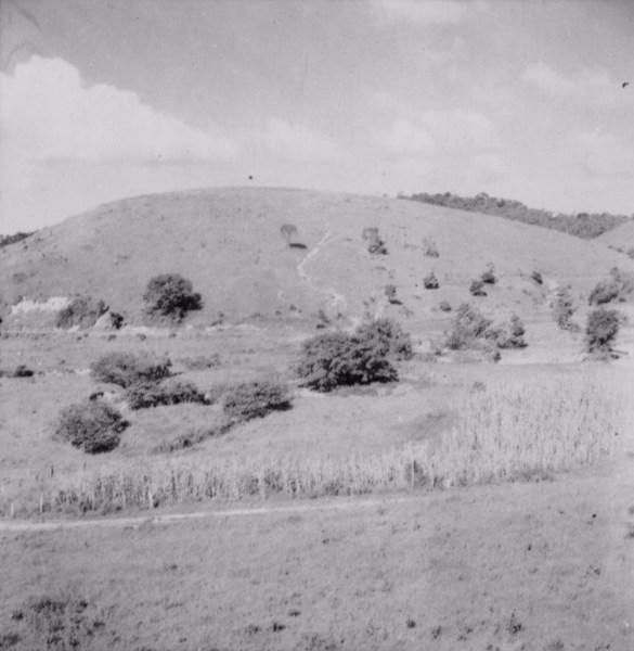 Relêvo ondulação ao sul de Laranjal (MG) - 1958