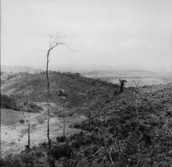 Panoramica da queimada entre Abre Campo a Manhuaçu (MG) - s.d