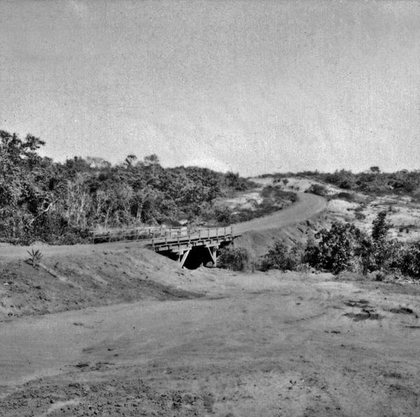 Ponte de madeira da BR-364 sobre o alto Juruena (MT) - 1968