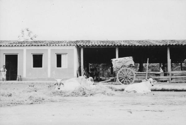 Casa com estábulo em Várzea Grande (MT) - 1955
