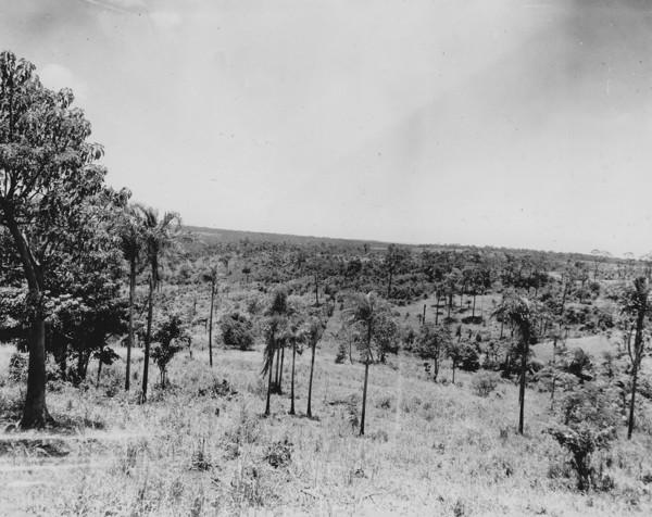 Vista em direção oeste da escarpa da Serra de Maracaju para Bela Vista (MT) - s.d.