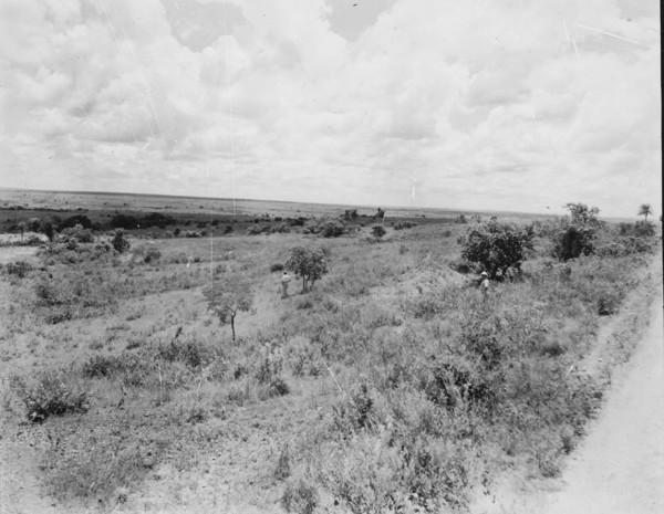 Vista do relevo na estrada Nioaque em Bela Vista (MT) - s.d.