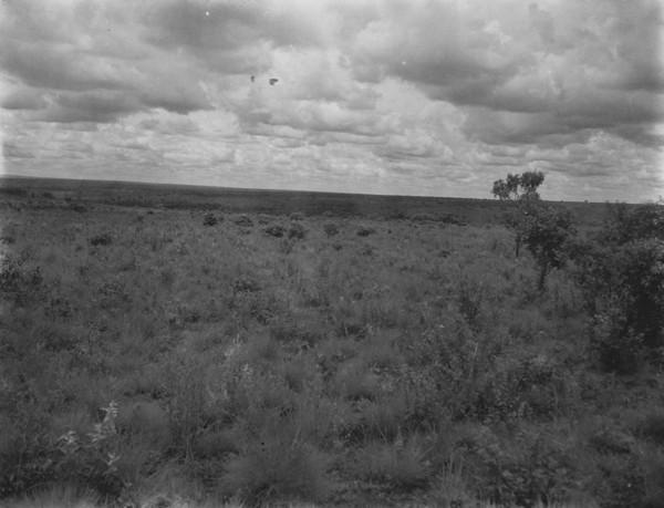 Vista em direção noroeste-este dos campos no alto da Serra de Maracaju perto de Campo Grande (MS) - s.d.