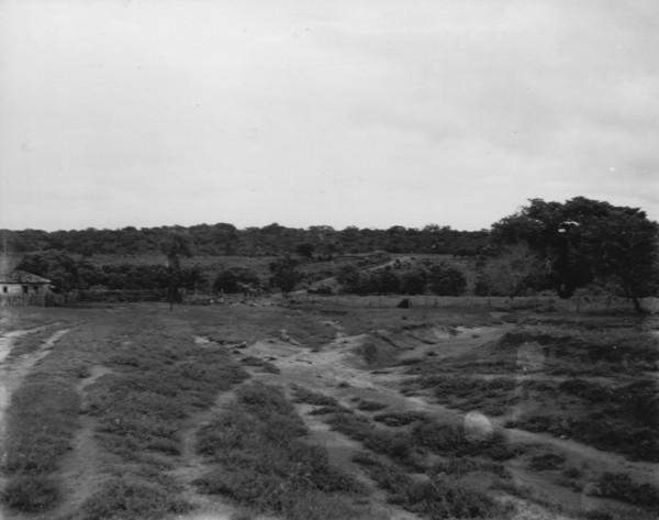 Fazenda Coqueiro perto de Santana do Paranaíba (MT) - 1952