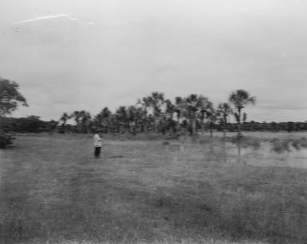 Buritizal na vazante perto de Santana do Paranaíba (MT) - 1952