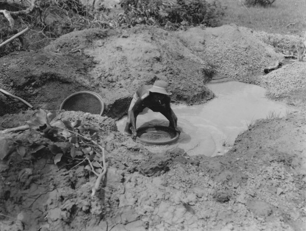 Garimpeiro peneirando o cascalho no garimpo Mindal em Alto Paraguai (MT) - 1953
