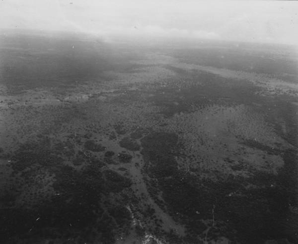 Pantanal alto na região entre Poconé e Cáceres (MT) - 1953