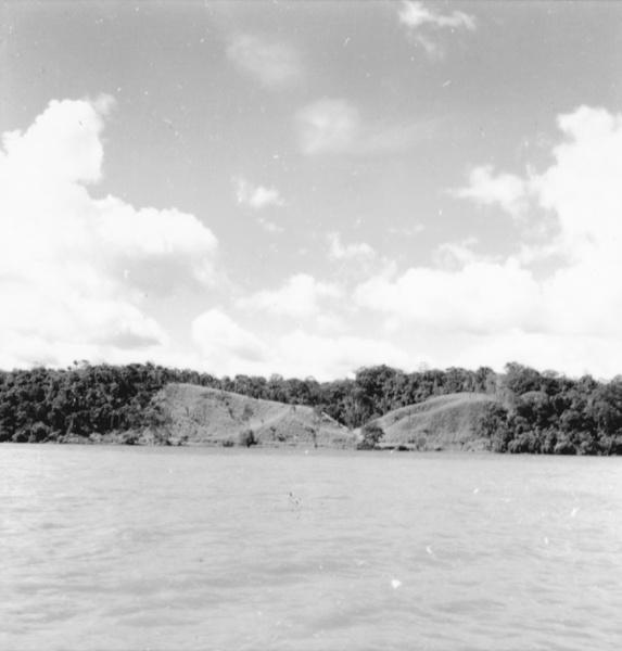 Plantação na margem do Rio Trombetas em Oriximiná (PA) - maio. 1966