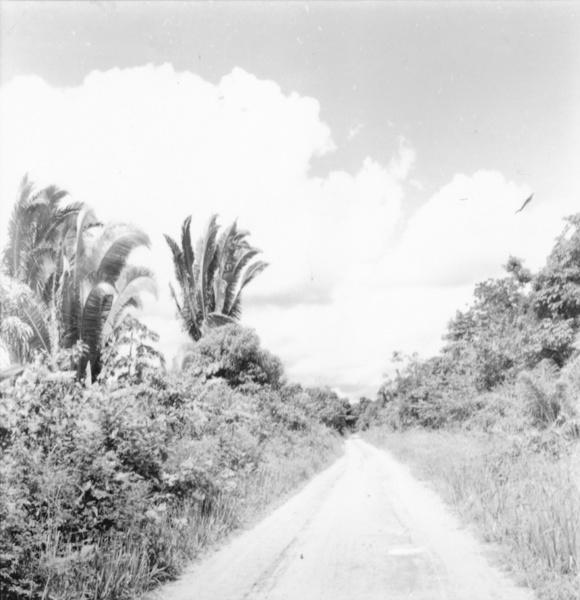 Estrada que liga Santarém a Moju (PA) - maio. 1966