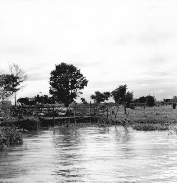 Curral no Paraná Alenquer em Alenquer (PA) - maio. 1966