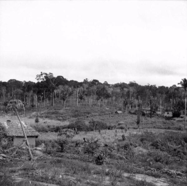 Capoeiras, pastos e colonião em Nova Ipixuna (PA) - s.d.