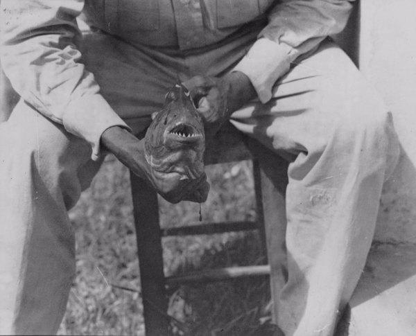 Pescador com uma piranha em Sousa (PB) - ago. 1952