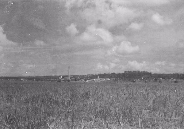Usina São João em Santa Rita (PB) - 1956