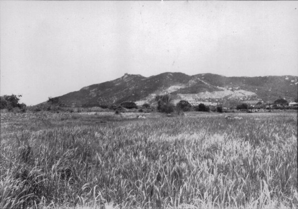 Pico do Jabre em Teixeira (PB) - 1956